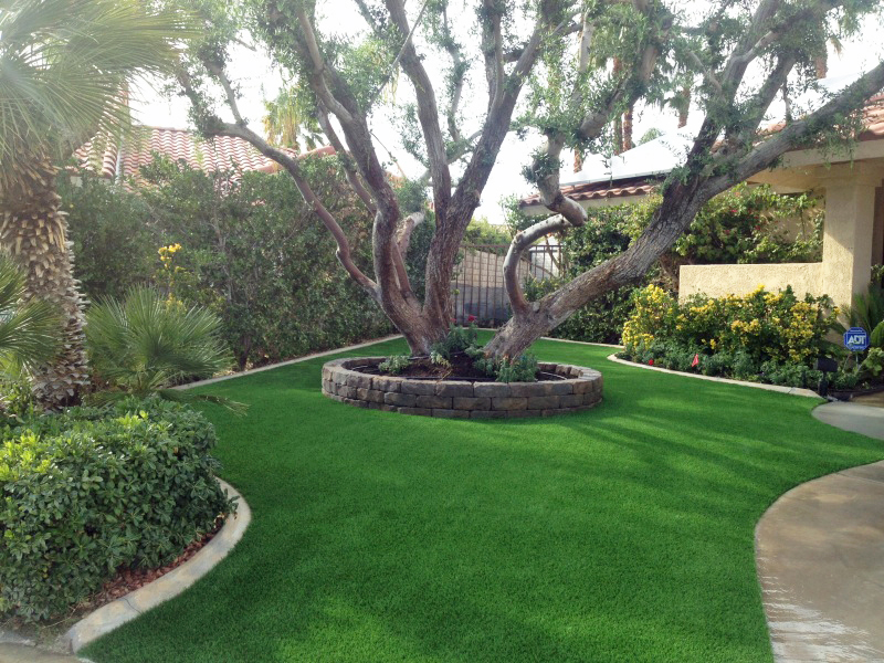 Artificial grass curved along sidewalk and large tree