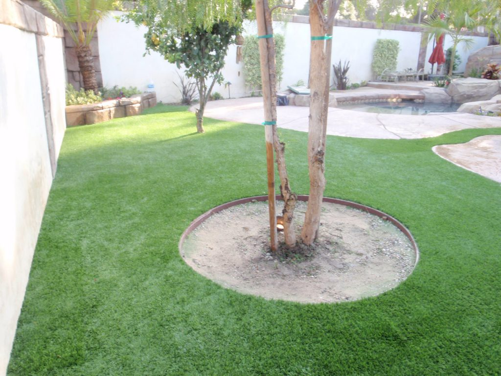 Tree standing inside a circular cut of artificial grass