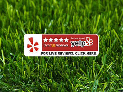 Yelp - For Live Reviews, Click Here